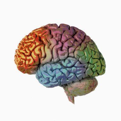 Best Memory Boosting Games – Brain Power Games