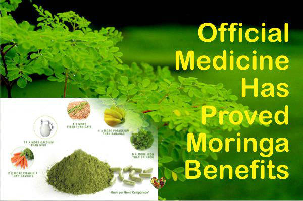 Nutritional Benefits of Moringa – Hype or Real Benefits?